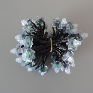 Smart 12v 50ct Square Nodes Black Wire xConnect Regulated - Image 1